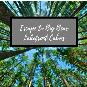 "graphic with picture of alpine trees against blue sky in background, text on top saying ""escape to big bear lakefront cabins"""