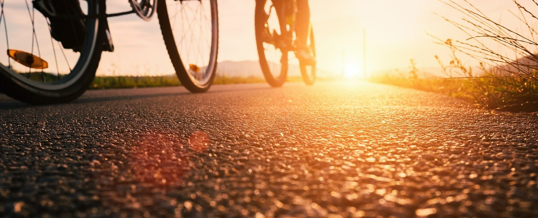 people biking on a road